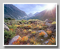Eastern Sierra, Owens Valley, White Mountains, Subgallery