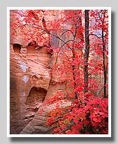 Southwest Thumbnail Gallery Doug Sprock Photography